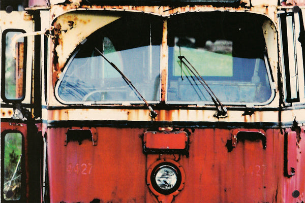 Streetcar Outdoor Art Print