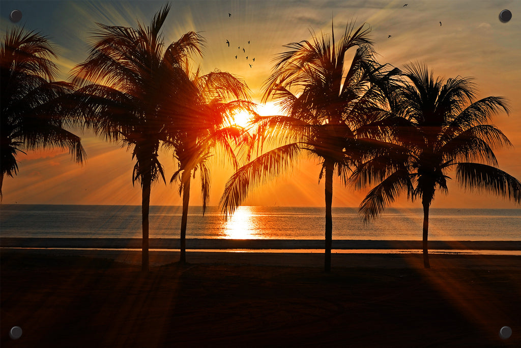 Beach Palms Sunset Outdoor Art Print