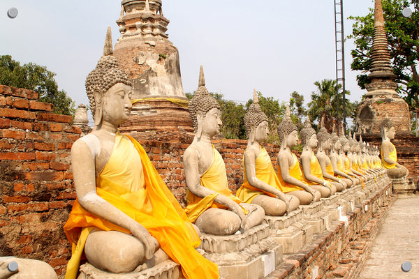 Buddhas in a Row Outdoor Art Print