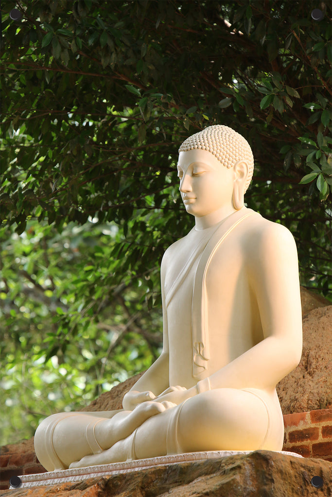 Buddha Outdoor Art Print