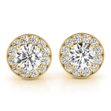Halo Round 14K Yellow Gold Stud Earrings