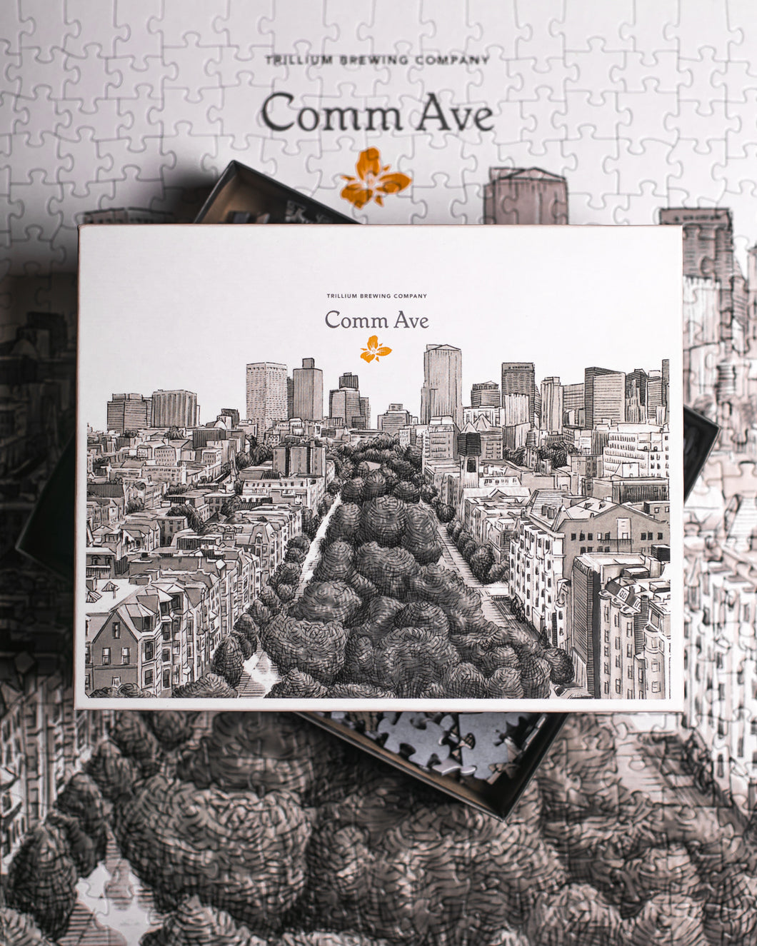 Comm Ave Jigsaw Puzzle