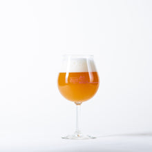 Load image into Gallery viewer, Trillium Brewing Company Dialed In Double IPA Glass