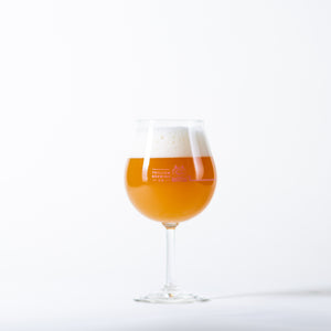 Trillium Brewing Company Dialed In Double IPA Glass