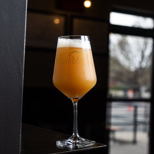 Trillium Brewing Company Permutation Series Glass