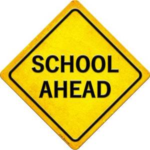 School Ahead Novelty Metal Crossing Sign CX-465