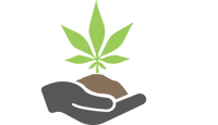 The Weed: Online Headshop