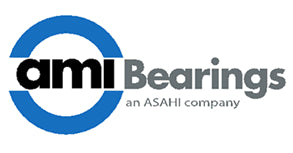 AMI BEARINGS