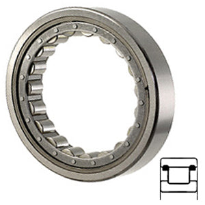 5207-B Cylindrical Roller Bearings