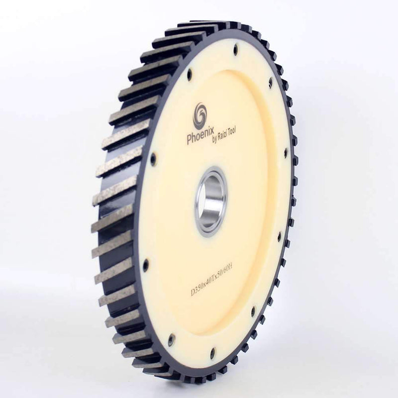 Raizi D350*40T Silent Diamond Milling Calibrating Wheel