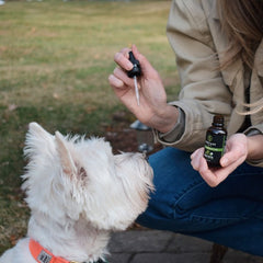 CBD Oil Drops for Pets - 300 MG Total