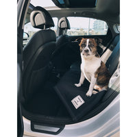 Dog Car Blanket (World of Angus) - FREE Shipping (www.Happy-Tails-Inc.ca)