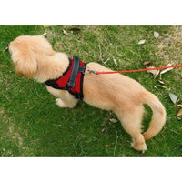 Dog harness, adjustable - FREE Shipping (www.Happy-Tails-Inc.ca)