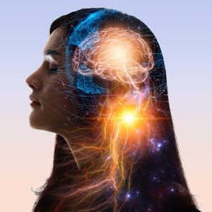 Brain Power: Nurturing your Billions of Neurons*