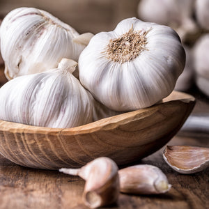 Herbs 101: Garlic