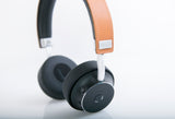 Princeton Audio Video Microlab Mogul Headphones