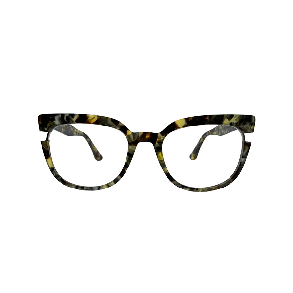 black_and_honey_tortoise_frame