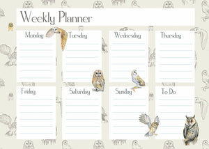 owl diary weekly planner gift present