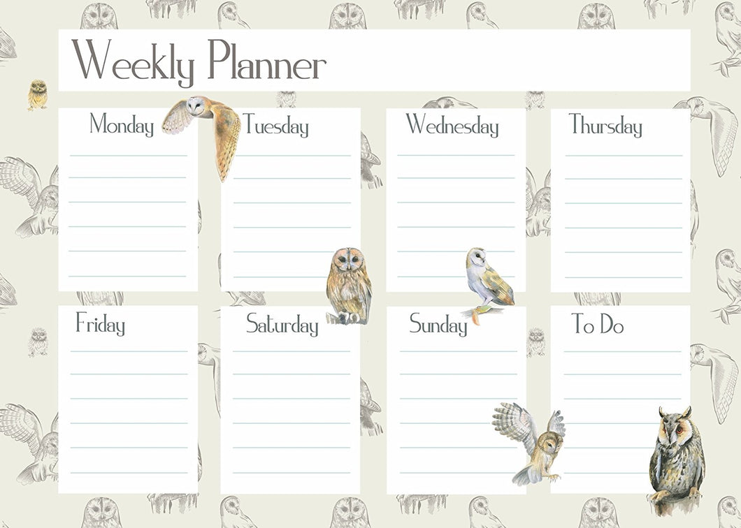 owl diary weekly planner gift present by Ceinwen Campbell and The Arty Penguin