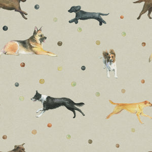 Dog Wrapping paper featuring alsations, Springer Spaniel, Cocker Spaniel and Border Collie Ceinwen Campbell The Arty Penguin