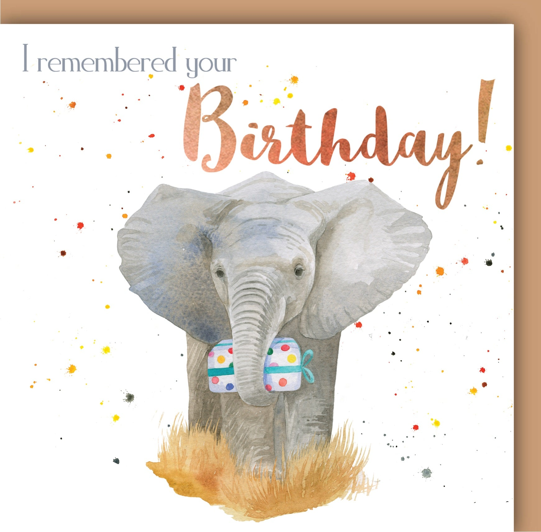Elephant I Remembered Your Birthday Card