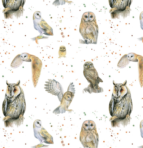 Owl and chick gift wrapping paper