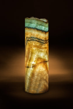 Oasis Cylindrical Live Edge Table Lamp