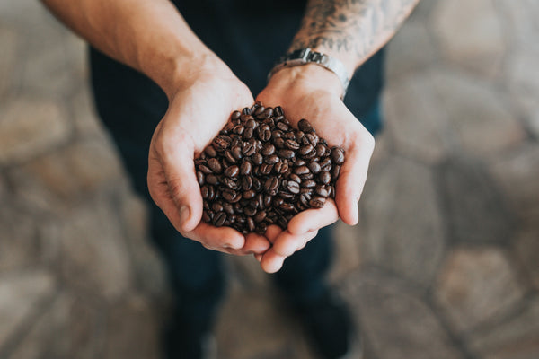 A person with tattoos and a watch on their arm holding a pile of coffee beans.