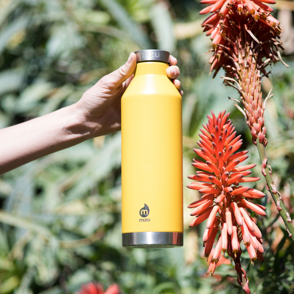 Mizu V8 Insulated Water Bottle