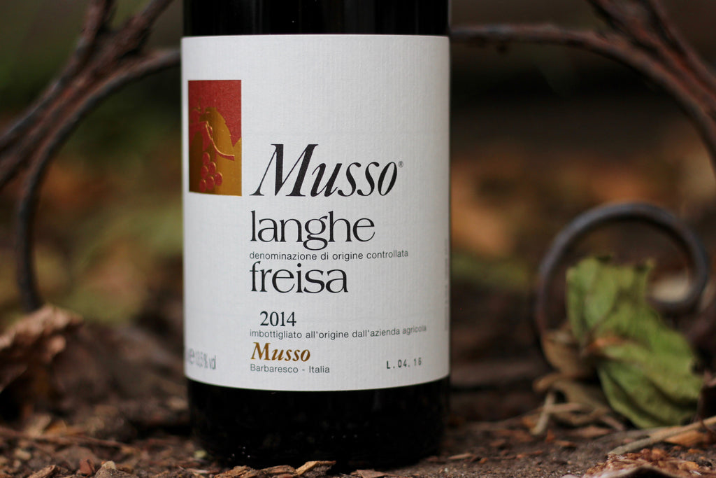 2014 Musso Langhe Freisa - Rock Juice Inc