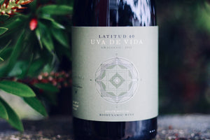 2015 Uva de Vida Graciano - Rock Juice Inc