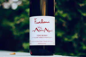 2017 Furlani 'Negrik' Rosso Alpino - Rock Juice Inc