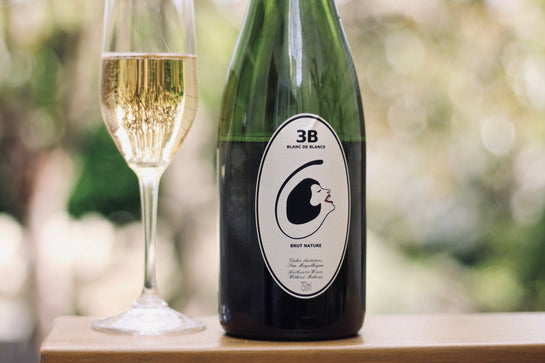 NV Filippa Pato '3B' Blanc de Blanc - Rock Juice Inc