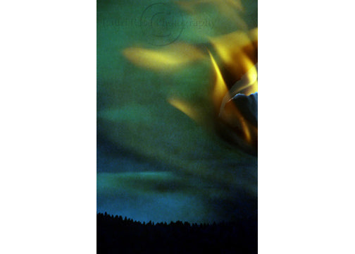 Throw Back Thursday: Northern Lights, 2002