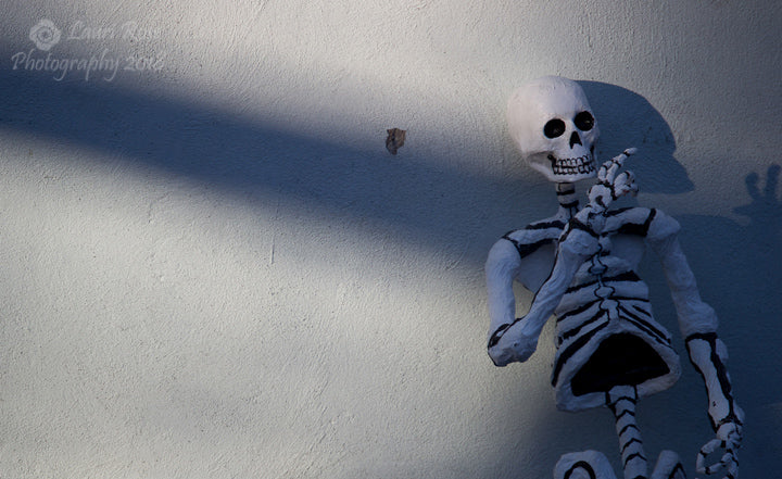 Skeleton on Wall; Mexico City, Mexico