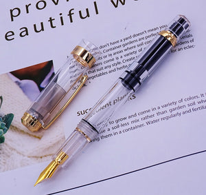 Wingsung 698 Transparent Fountain Pen - 0.38/0.5mm Gold / Silver Clip with Gift Box