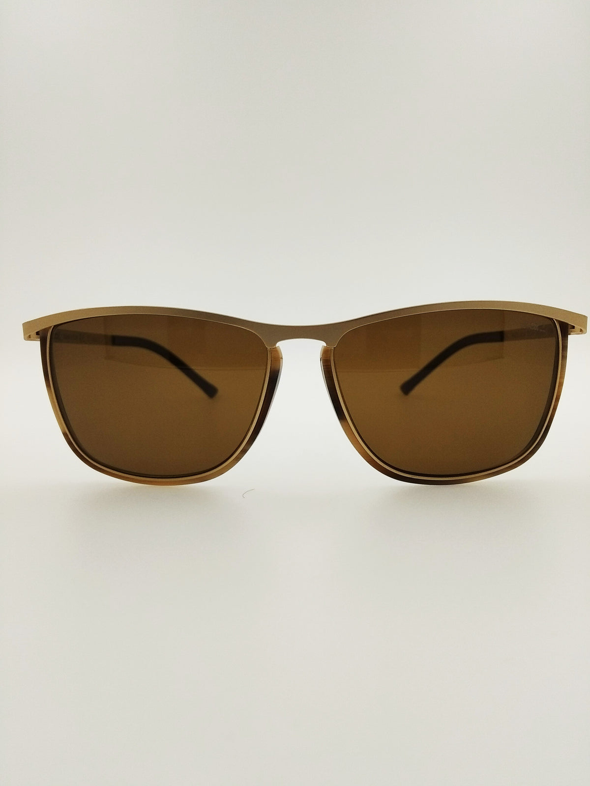 10653 M2S POLARIZED