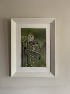 barn owl pastel painting by irish artist grace scott owl gifts