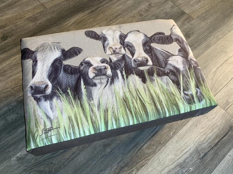 Friesian Cows Through Grass Footstool