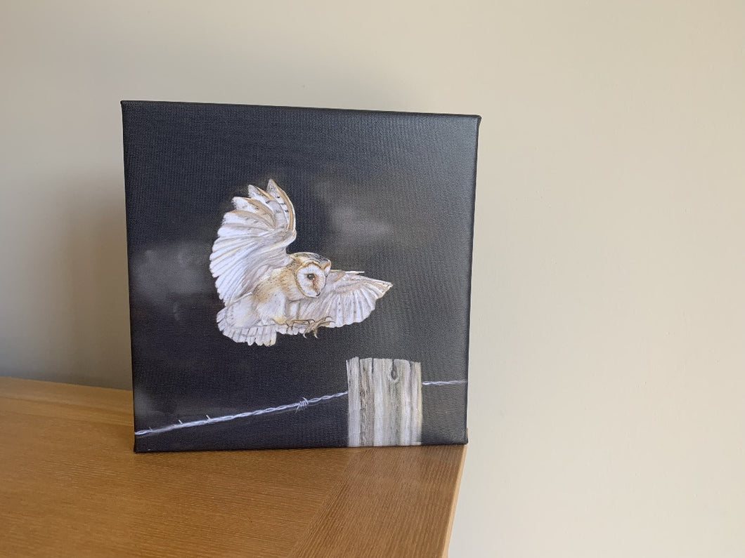 Owl In Flight Limited Editon Canvas Print