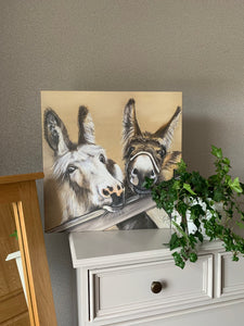 Donkeys Limited Edition Canvas Print