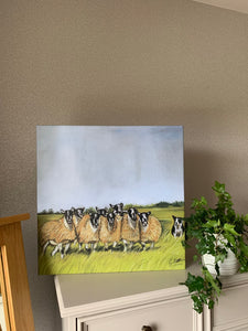 Sheep and Collie Limited Edition Canvas Print