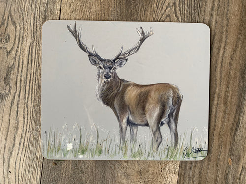 SECONDS Stag Placemat