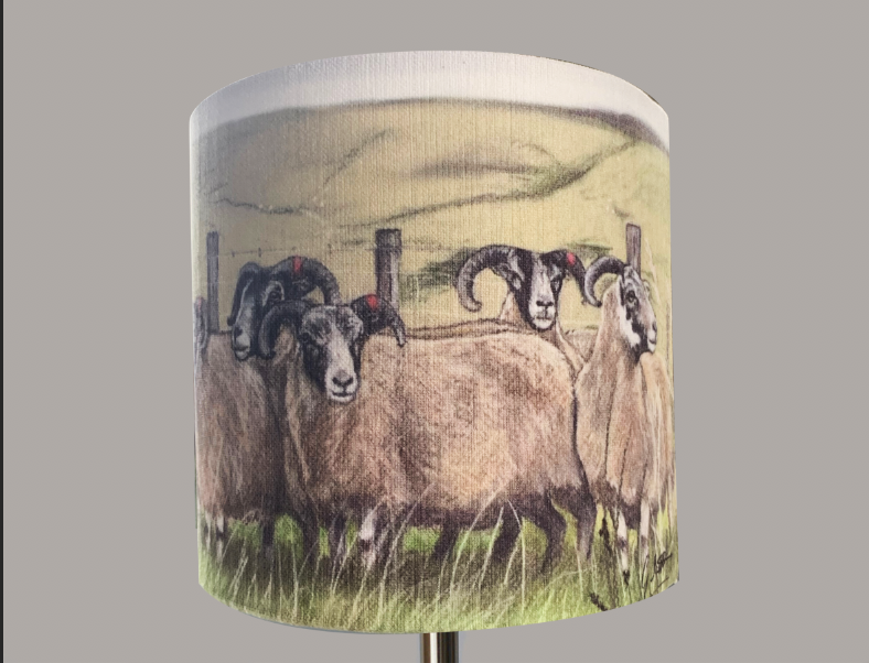 blackface sheep lampshade grace scott