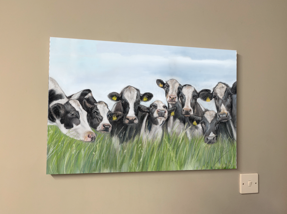 Herd Of Friesian Cows Oblong Canvas Print