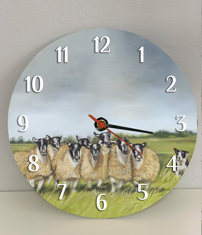 Flock Of Sheep with Collie Clock