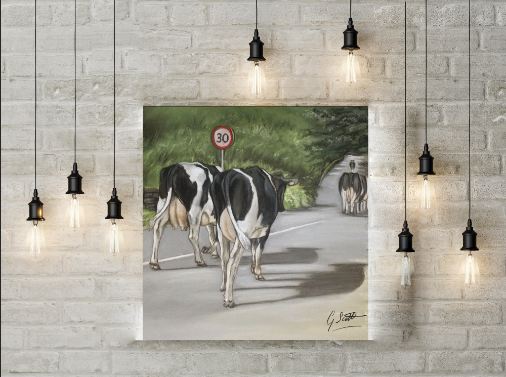 Cows Walking Road Limited Edition Canvas Print