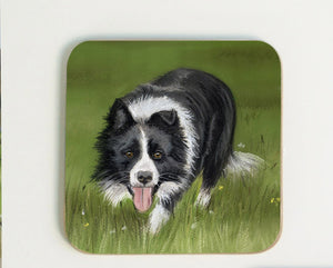 New Collie Coaster