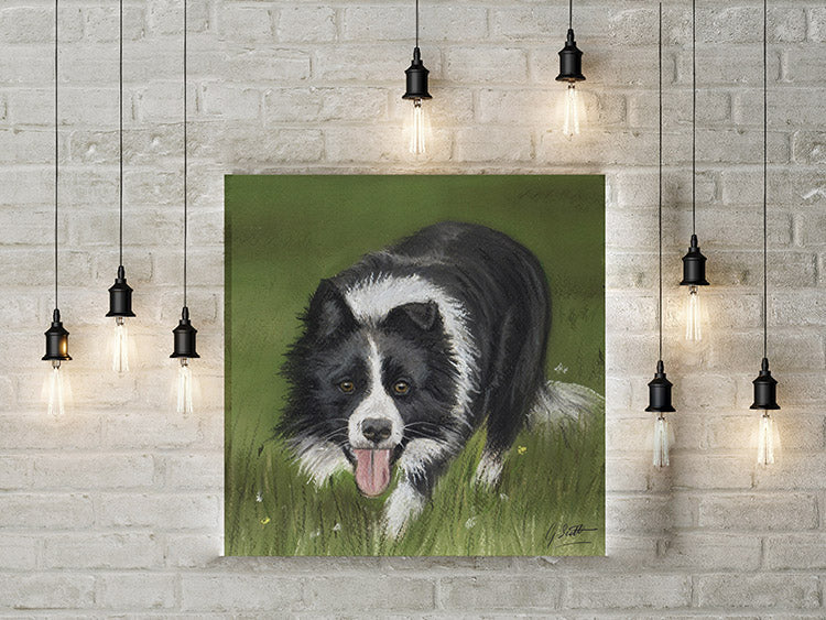 Working Collie Limited Edition Canvas Print