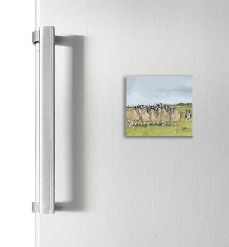 Sheep And Collie Square Magnet
